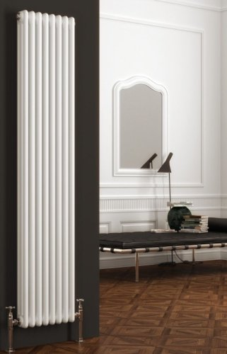 Reina 2 Column Colona Vertical Radiator 200 x 1500mm